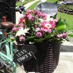 Tips para seleccionar un jardín para tu boda